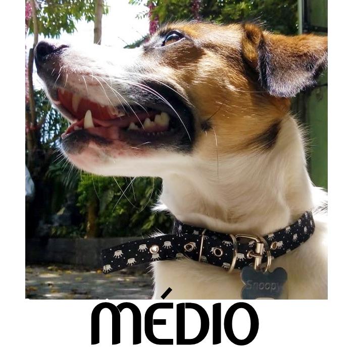 Coleira para Cachorro Porte Médio com Nome