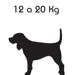 Indicado para o Peso: 12 a 20 Kg