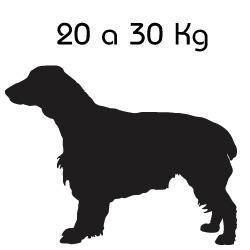 Indicado para o Peso: 20 a 30 Kg