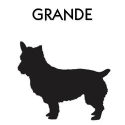Peitoral para Cachorro Grande com Guia