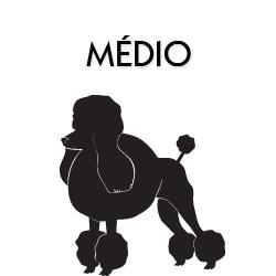 Médio