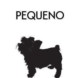 Coleiras, Peitorais e Guias para Cães de Pequeno Porte
