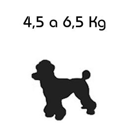 Roupa para Cachorro Porte Médio